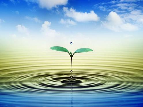 Agua-es-vida